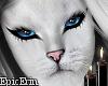 Khajiit Cat Face/Head v4