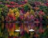 *L* Swan Lake BG