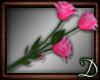 [D] Hot Pink Roses, ani
