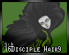 6Disciple Hair9