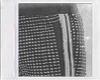 PALM ANGEL TRACK PANT