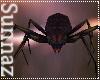 (S1) Fighting Spiders