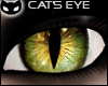 [SIN] Cat'sEye - green