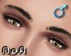 *NoA*M. Eyes Light Brown