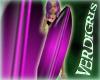 `V` Pink & Black Board