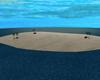 Huge Island Room