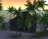Private Island Romance