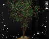 n| Tree
