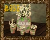 Herb flower pot @rose@