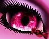 *DK Cotton Candy Eyes F