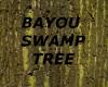 [LD] BAYOU SWAMP TREE