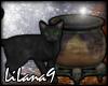 *LL* Black cat/Cauldron