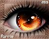 f| Furry Fox Eyes
