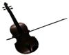 Salsa Violin
