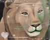 Lion -Animated