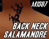 SALAMANDRE BACK NECK TAT