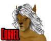 White lion hair