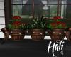 farmhouse planter