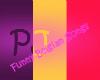 $PJ$ Funny Belgian Songs