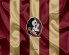FSU Seminoles Flag