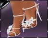 Shoes Fani