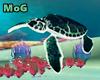 - Animated Turtle ~