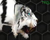 {TFO} White Tiger Pet