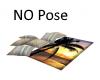 Pillows/Towel-No Poses