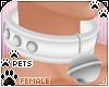 [Pets] Collar v2 | White