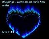 Blutjungs Herz [DK]