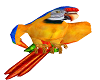 Tropical Parrot Animated