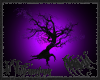 Purple Leaved Tree