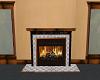 SW fireplace insert