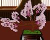 Japanese Sento Bonsai