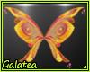 Ǥ| Stella Bloomix V2