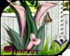 [ND]Flowers Bouquet™ •D•
