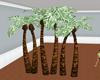PALM TREE: MIAMI