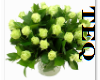 [TeQ]Bouquet White
