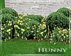 H. Spring Home Landscape