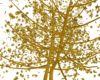 Gold Falling Leaf Tree