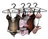 Closet Lingerie /Hangers