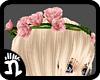 (n)Pink Rose Crown