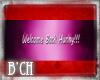 (B'CH) banner