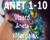 Vizard Aneta
