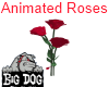 [BD] Animated Roses