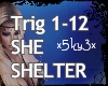 Shelter Mix