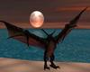 Flying Dragon Red Anim