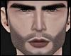 Camero Beard x Pale MH