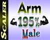 Arm Resizer 195%