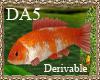(A) Koi Fish